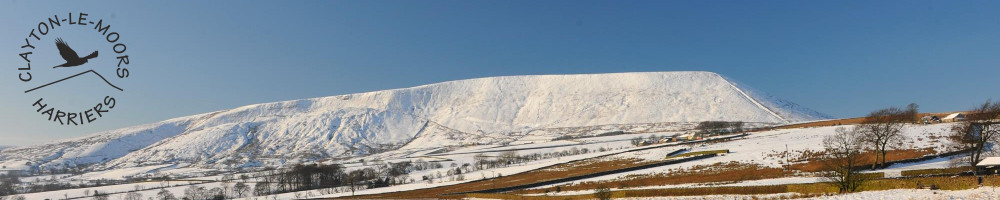 banner-comic-snow1.jpg