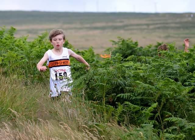 Matthew Jackson emerging from the gigantic bracken at the Widdop fell race. Photo by Nicholas Olszewski