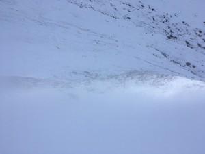 It snowed! Photo by Alan Dorrington